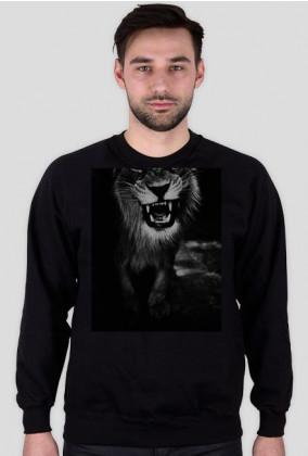 Tygrys 1