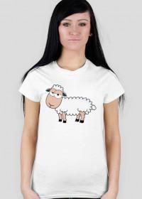 Owca - koszulka damska