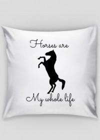 Horses are poduszka