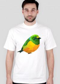 Ptaszek Man