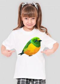 Ptaszek Girl