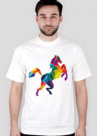 Koń Kolor Man