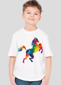 Koń Kolor Boy