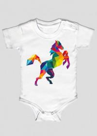 Koń Kolor Kid