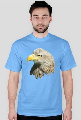 Bielik - T-shirt