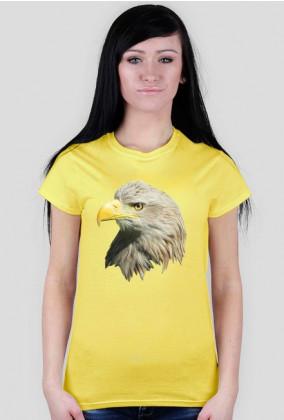 Bielik - koszulka