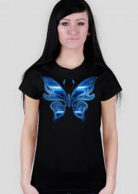 Motyl niebieski