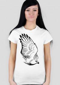 Jastrząb, rysunek - koszulka