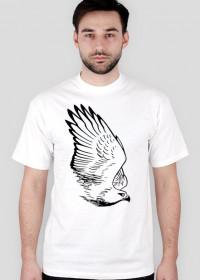 Jastrząb, rysunek - T-shirt