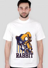 RABBIT V1