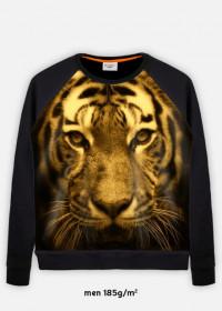 Bluza z tygrysem fullprint męska