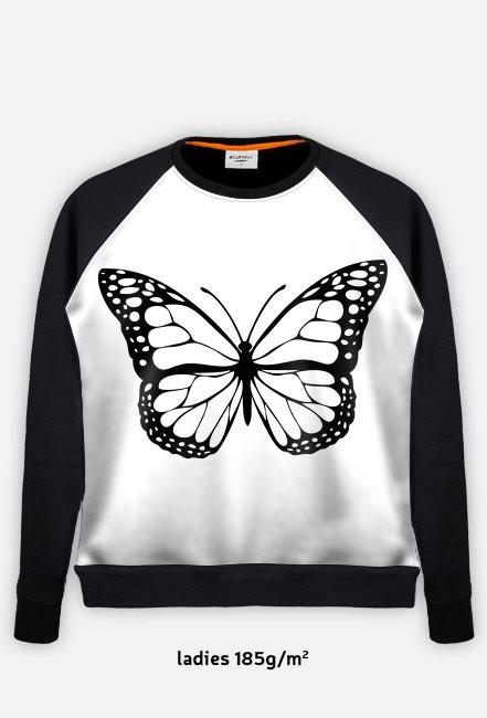 bluza z motylem