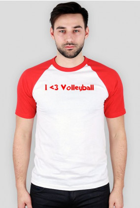 Poland Volleyball