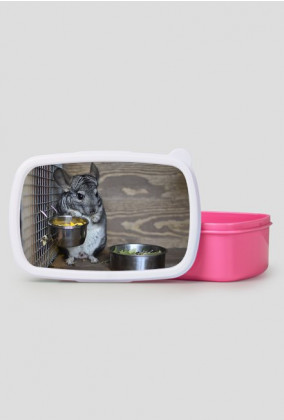 Szynszylowy lunchbox - Riki