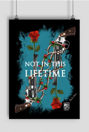 NOT IN THIS LIFETIME (plakat)