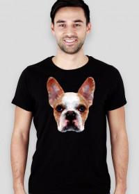 Buldog francuski low poly koszulka męska