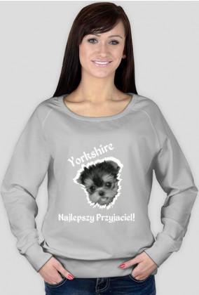 Yorkshire Przyjaciel Bluza