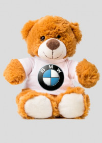 MIS BMW