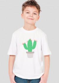 Kaktus - chłopiec - boombom.pl