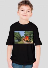 Koszulka chłopięca #7