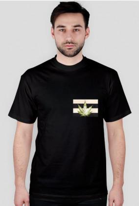 Koszulka Konopia