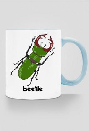 Beetle 01