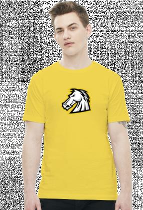 1stCav Głowa Kolorowy