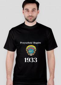 Koszulka 1933 kolor