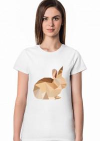 T-shirt - Królik
