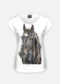 koń szary
