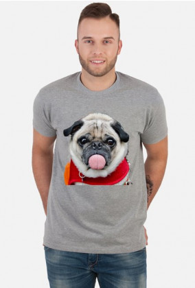 dog mops