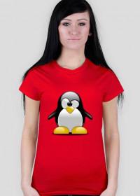 Koszulka pingwin D01