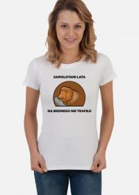 Koszulka damska, Samolotami lata, na biednego nie trafiło