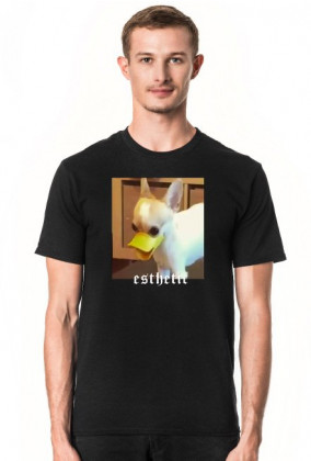 esthetic DOG