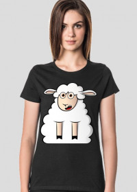 Surprised Sheep