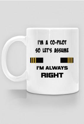 Kubek, I'm a co-pilot