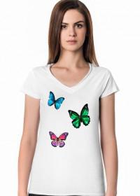 Lazura Butterfly