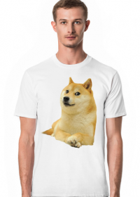 Pieseł Doge koszulka (różne kolory)