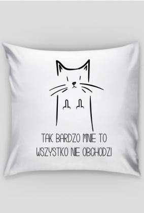 Kot, tak bardzo mnie to nie obchodzi, +prokrastynacja