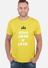 Echo niesie w lesie