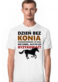Konie. Prezent. Koń.