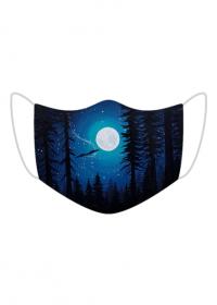 Północ W Magicznym Lesie