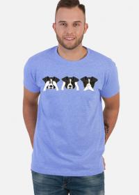 Koszulka psy