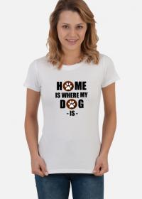 Home my dog