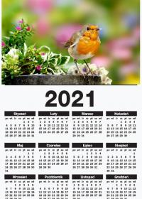 Kalendarz scienny A1 pionowy 2021 Ptaszek