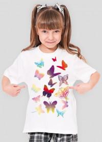 motylki dla dziewczynki